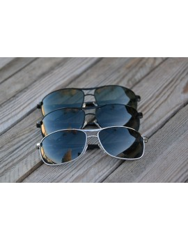 Sunglasses POLARIZED PZ-013
